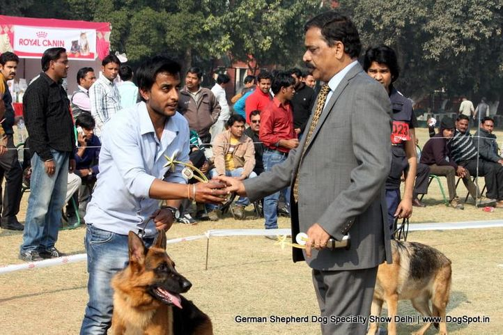 german shepherd dog specialty show delhi, German Shepherd Dog Specialty Show Delhi, DogSpot.in