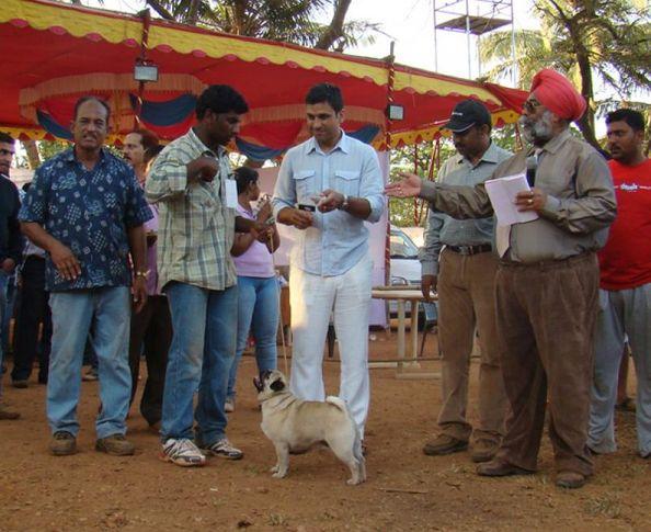 goa dog show, Goa Dog Show ., DogSpot.in