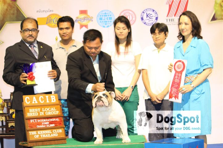 Pomeranian, Grand Show Thailand 2009, DogSpot.in