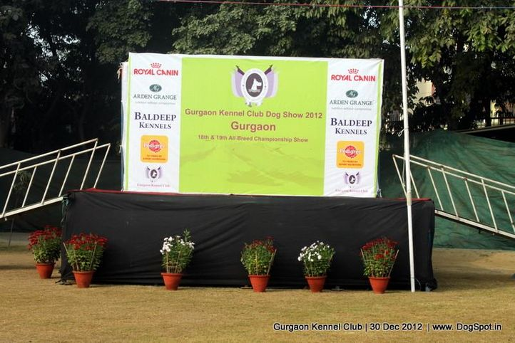 show ground,sw-77,, Gurgaon Dog Show 2012, DogSpot.in