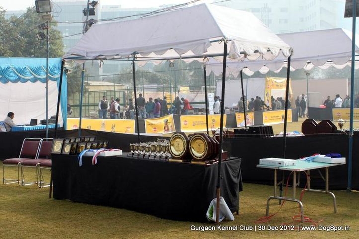 show ground,sw-77,, Gurgaon Dog Show 2012, DogSpot.in