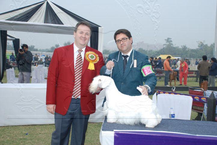 terrier,, Gurgaon Dog Show Day1, DogSpot.in