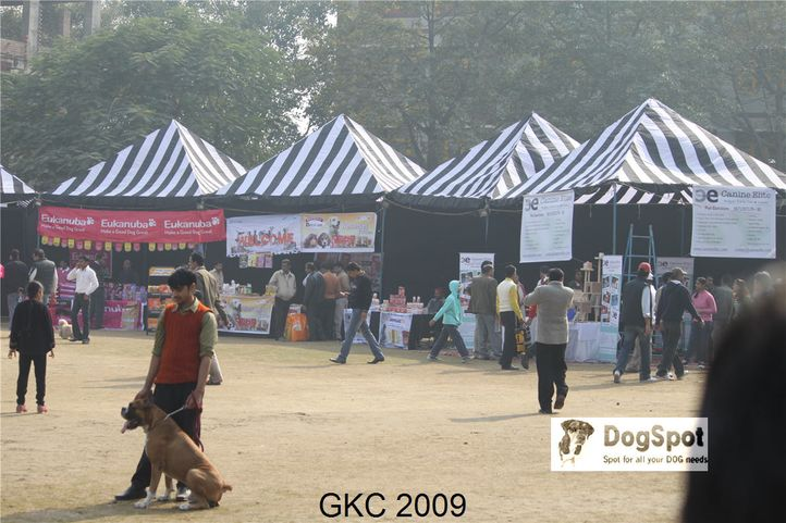 Ground,, Gurgaon Dog Show, DogSpot.in