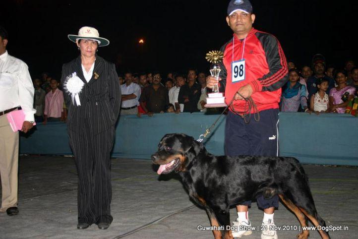 ex-98,sw-9,rottweiler, SANTOS SCHWARZ ROTT GARDE, Rottweiler, DogSpot.in