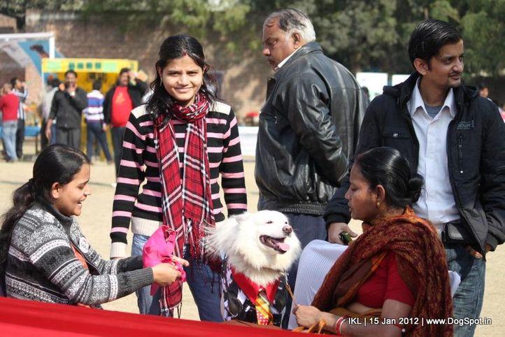 fancy dress,spitz,, IKL Delhi 2012, DogSpot.in
