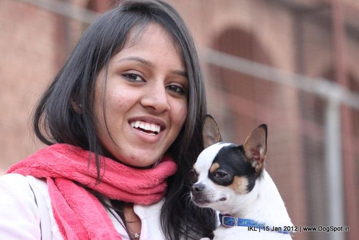 chihuahua,people,, IKL Delhi 2012, DogSpot.in