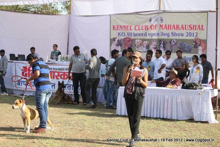 people,ring steward,sw-54,, Jabalpur 2012, DogSpot.in