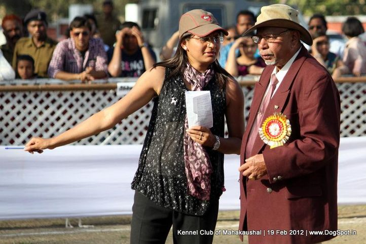 judge,people,ring steward,sw-54,, Jabalpur 2012, DogSpot.in