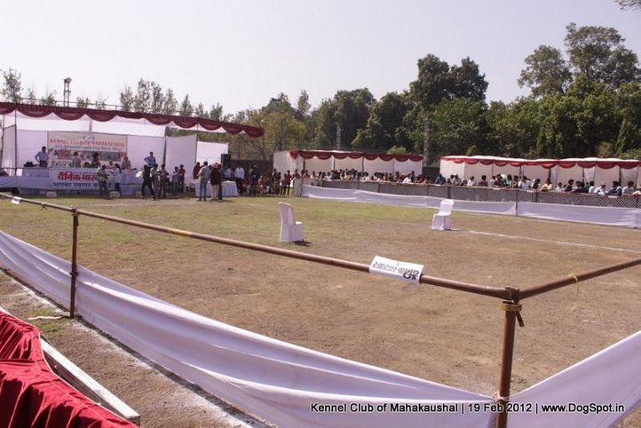 ground,sw-54,, Jabalpur 2012, DogSpot.in