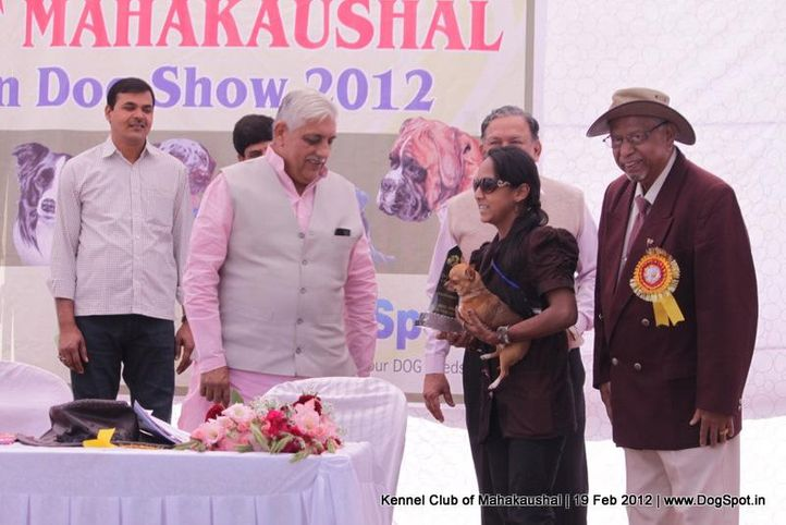 ground,guest,people,sw-54,, Jabalpur 2012, DogSpot.in