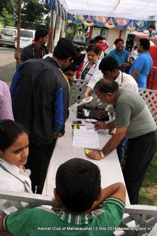 sw-127,vet check,, Jabalpur Dog Show 2 Nov 2014, DogSpot.in