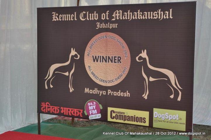 Ground,sw-60,, Jabalpur Dog Show 2012, DogSpot.in