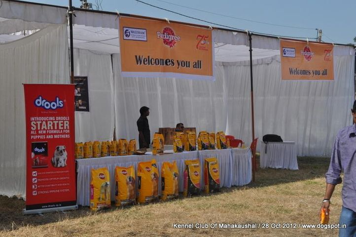 Ground,people,sw-60,, Jabalpur Dog Show 2012, DogSpot.in