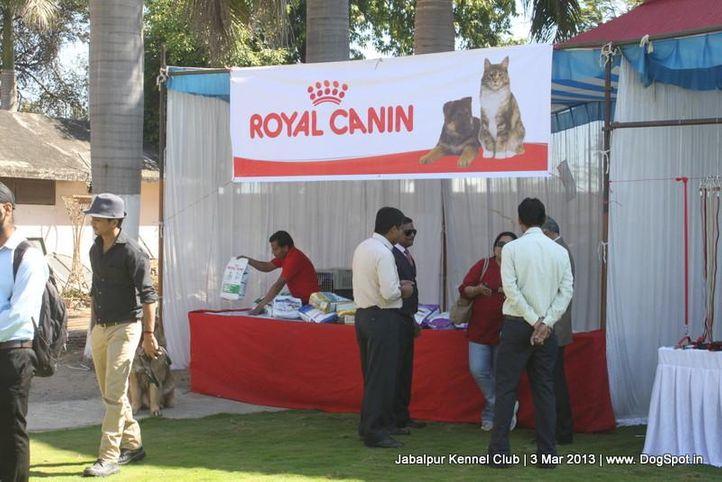 show ground,sw-81,, Jabalpur Dog Show 2013, DogSpot.in
