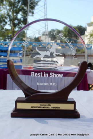 show trophy,sw-81,, Jabalpur Dog Show 2013, DogSpot.in