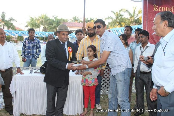 line up,sw-81,, Jabalpur Dog Show 2013, DogSpot.in