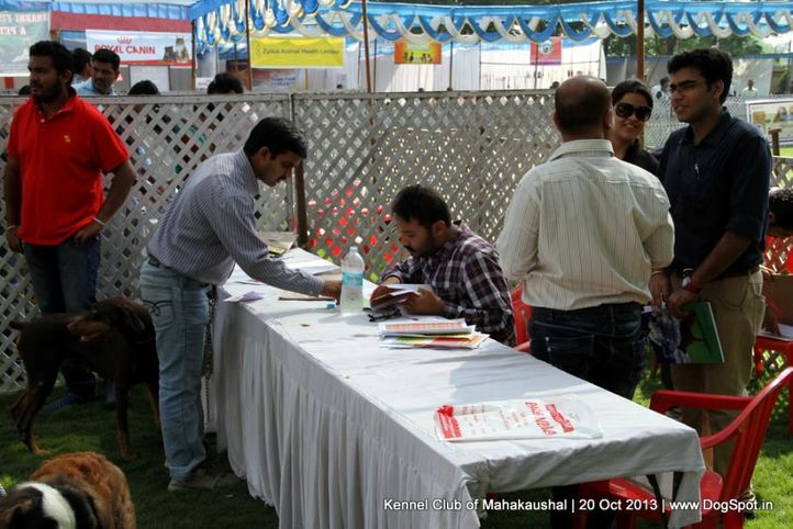 office work,sw-87,, Jabalpur Dog Show 2013, DogSpot.in