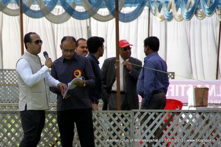 personal,sw-87,, Jabalpur Dog Show 2013, DogSpot.in