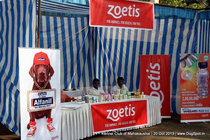stalls,sw-87,, Jabalpur Dog Show 2013, DogSpot.in