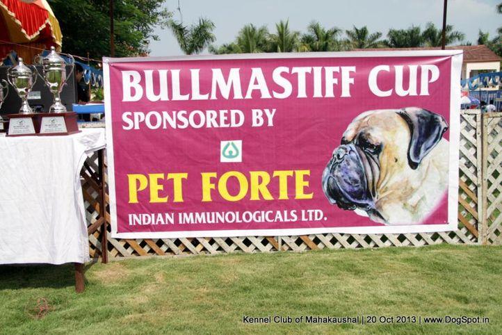 sw-87,trophies,, Jabalpur Dog Show 2013, DogSpot.in