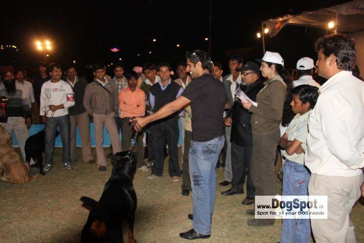 Lineup,Rott,, Jaipur 2010, DogSpot.in