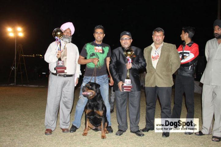 First,Lineup,Rott,, Jaipur 2010, DogSpot.in