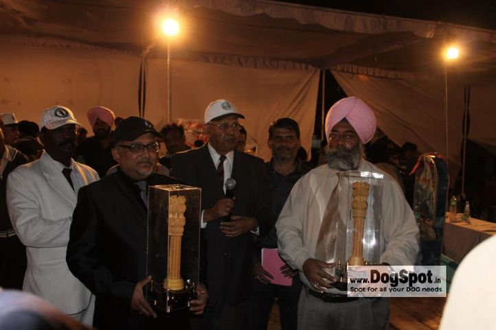 committee,judges,, Jaipur 2010, DogSpot.in