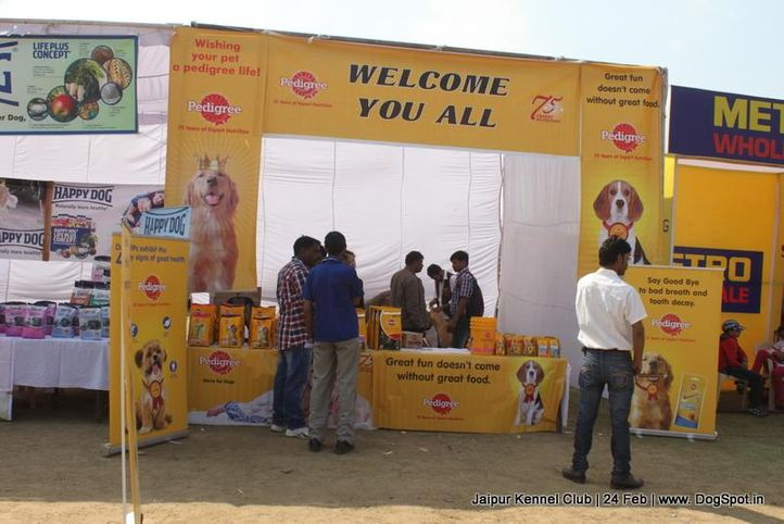 show stall,sw-84,, Jaipur Dog Show 2013, DogSpot.in