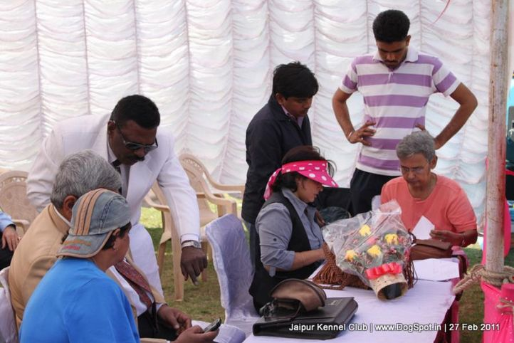 sw-34ground,table,, Jaipur Kennel Club, DogSpot.in