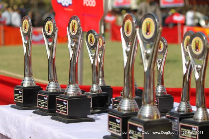 sw-34ground,trophies,, Jaipur Kennel Club, DogSpot.in