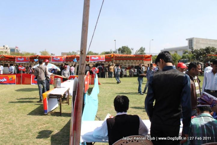 sw-34ground,, Jaipur Kennel Club, DogSpot.in