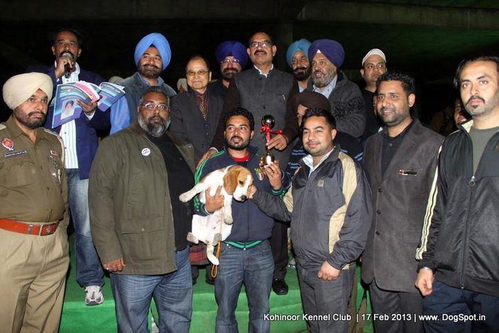 line up,sw-82,, Jalandhar Show 2013, DogSpot.in