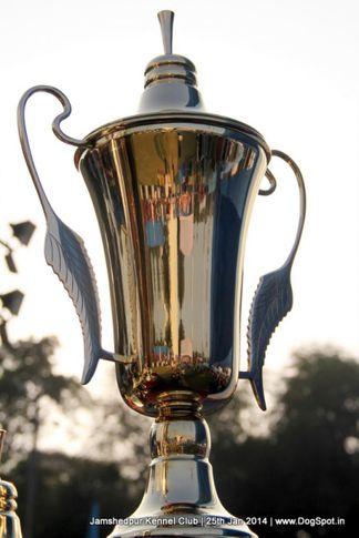 show trophy,sw-114,, Jamshedpur Dog Show 2014, DogSpot.in