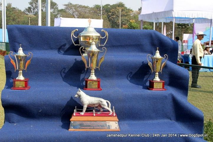 show trophy,, Jamshedpur Obedience Dog Show 2014 , DogSpot.in