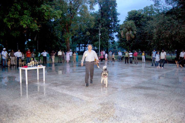 , kannel club of mahakaushal, Jabalpur, MP, DogSpot.in