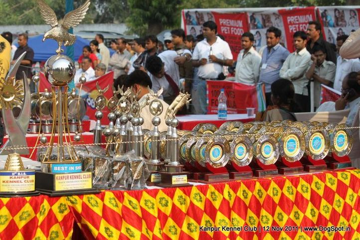 ground,sw-42,trophies,, Kanpur Dog Show 2011, DogSpot.in