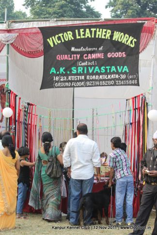 ground,stalls,sw-42,, Kanpur Dog Show 2011, DogSpot.in