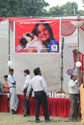 ground,stalls,sw-42,, Kanpur Dog Show 2011, DogSpot.in
