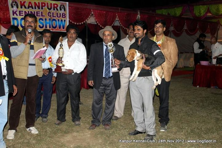 line up,sw-72,, Kanpur Dog Show 2012, DogSpot.in
