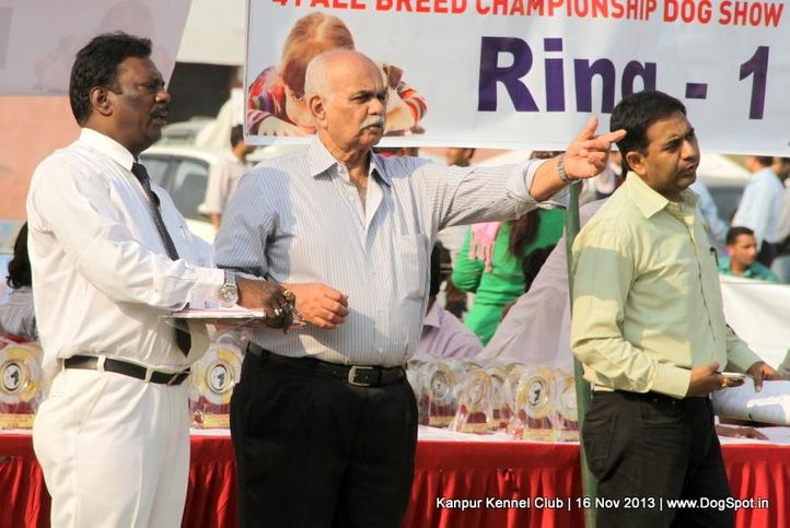 judge,sw-97,, Kanpur Dog Show 2013, DogSpot.in