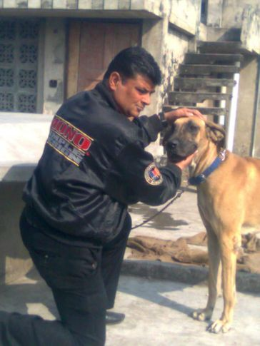 , Kataria Kennels, DogSpot.in
