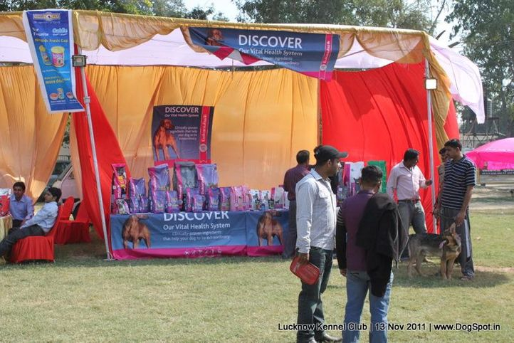 ground,sw-43,, Lucknow Dog Show 2011, DogSpot.in