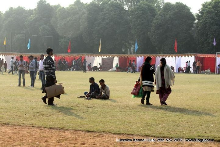 ground,sw-71,, Lucknow Dog Show 2012, DogSpot.in