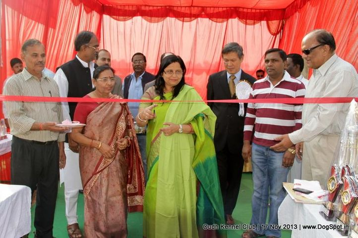 committee,sw-101,, Lucknow Dog Show 2013, DogSpot.in