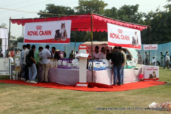 ground stalls,sw-66,, Ludhiana Dog Show 2012, DogSpot.in