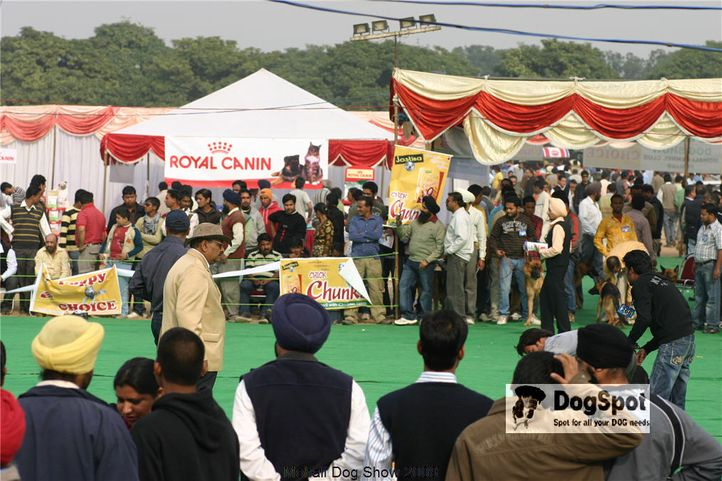 Ground,, Mohali Dog Show, DogSpot.in