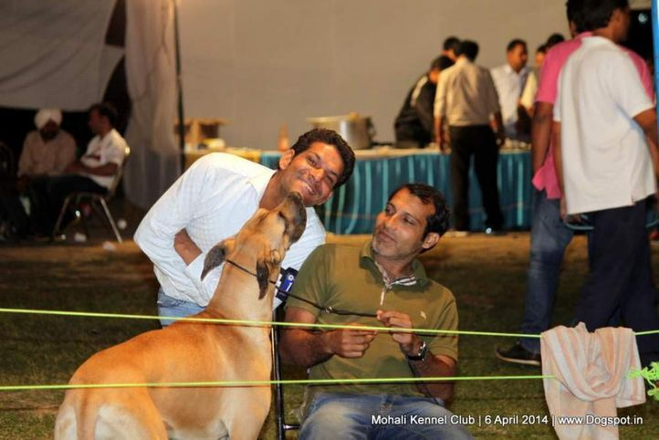 people,sw-122,, Mohali Kennel Club, DogSpot.in