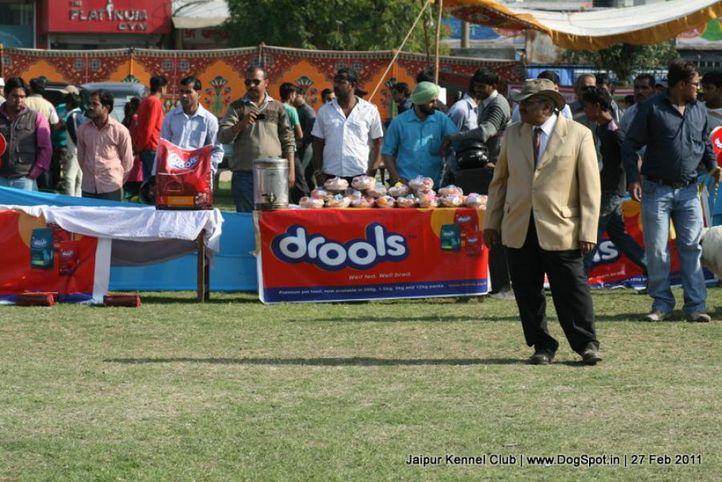 judges,sw-34, Mr. Rajendra M. Salvi, DogSpot.in