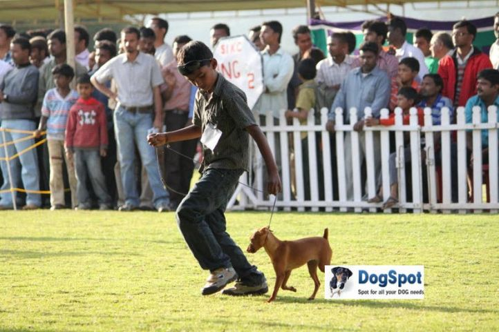 sw-18, child handler,, Ooty Dog Show 2010, DogSpot.in