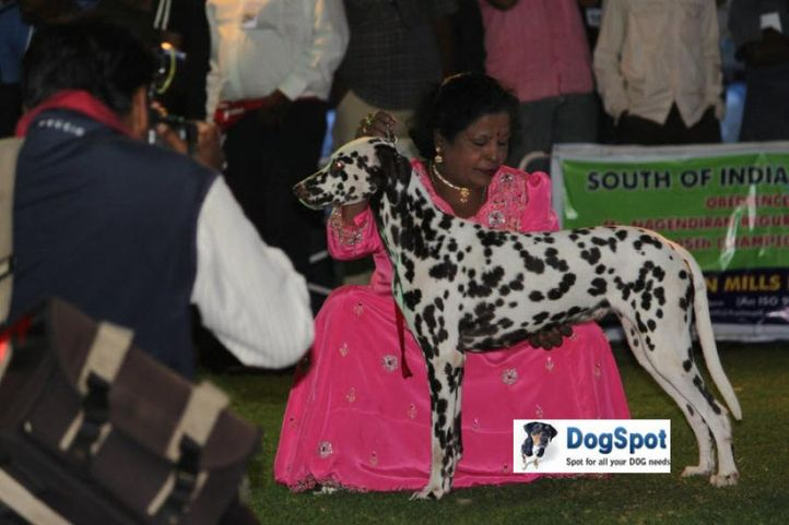 sw-18, lady handlers,ms kalavanai,, Ooty Dog Show 2010, DogSpot.in